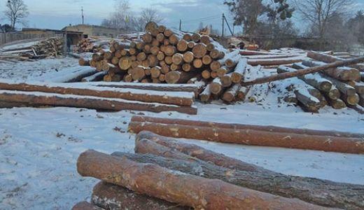 Вилучили лісодеревину, на яку не було документів