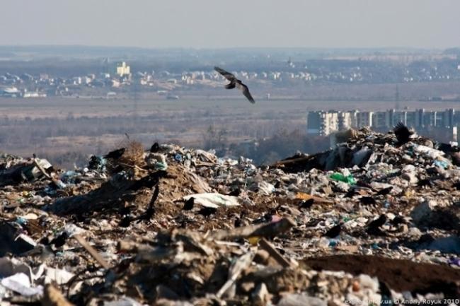 Людське сміття важить більше ніж усе живе