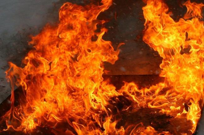 """Результат пошуку зображень за запитом """"вогонь"""""""